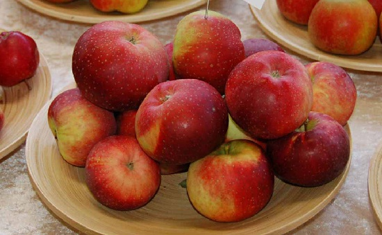 Яблоня лобо описание фото